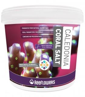 ReeFlowers Caledonia Coral Salt