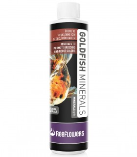 ReeFlowers GoldFish Minerals